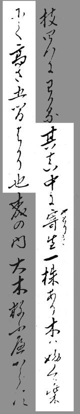 121125_fukurashiba