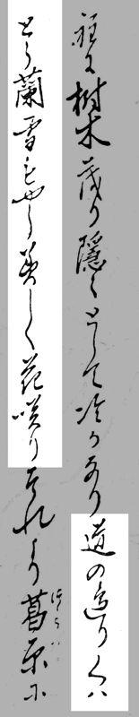 01_くハとう蘭